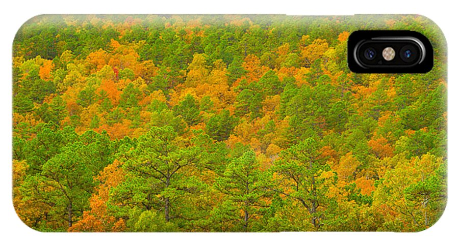 Autumn Photographs IPhone X Case featuring the photograph Autumn Treescape by Vernis Maxwell