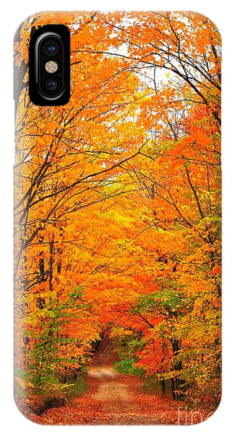 Autumn IPhone X Case featuring the photograph Autumn Tunnel Of Trees by Terri Gostola