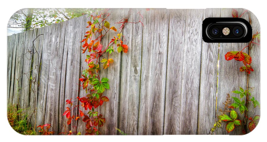 Autumn IPhone X Case featuring the photograph Autumn Vines by Donna Doherty