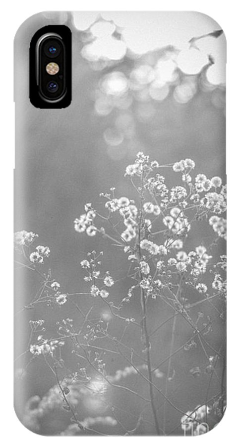 IPhone X Case featuring the photograph Autumn Weeds by Cheryl Baxter