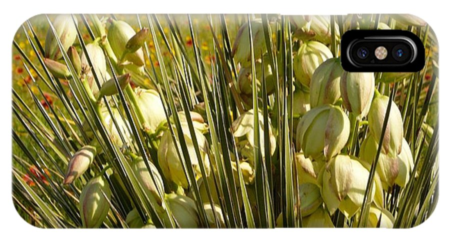 Flower IPhone X / XS Case featuring the photograph Awe Yucca by David Pennington Sr