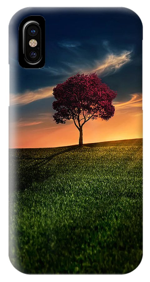 Agriculture IPhone X Case featuring the photograph Awesome Solitude by Bess Hamiti