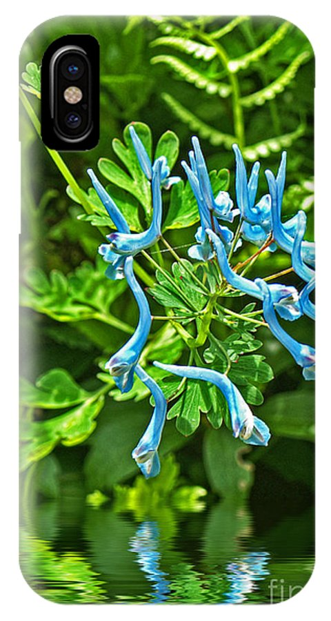 Flower IPhone X Case featuring the photograph Baby Blue Flowers by Dawn Harris