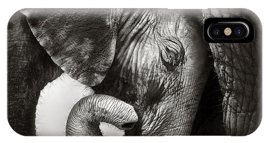Elephant IPhone X Case featuring the photograph Baby Elephant Seeking Comfort by Johan Swanepoel