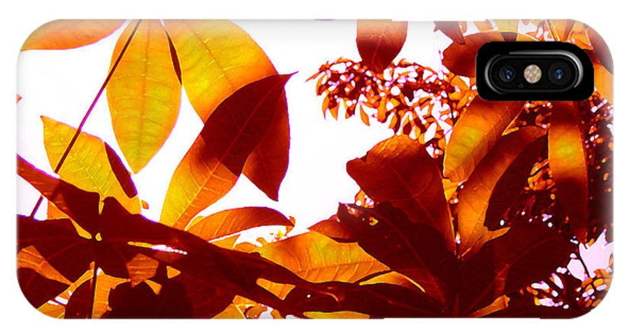 Garden IPhone X Case featuring the painting Backlit Tree Leaves 2 by Amy Vangsgard