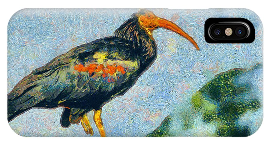 Rossidis IPhone X Case featuring the painting Bald Ibis by George Rossidis