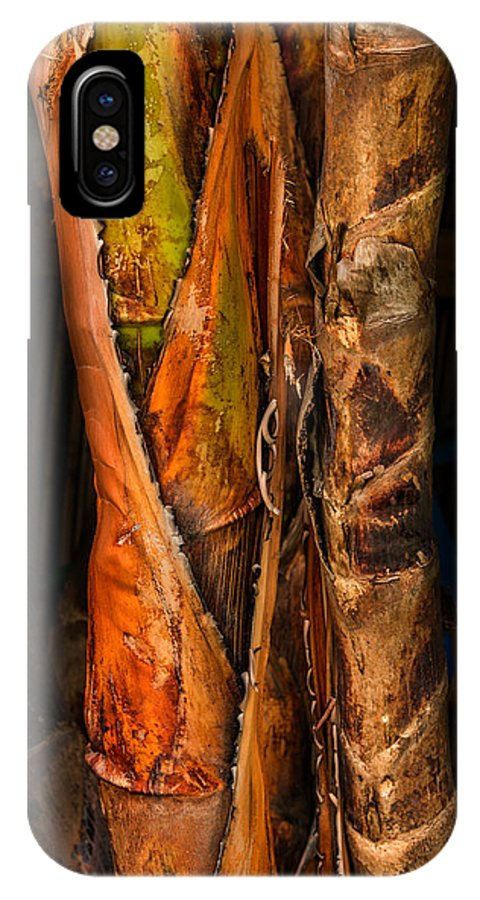 Balk Of Palm IPhone X Case featuring the photograph Balk Of Palm Tree by Xavier Cardell