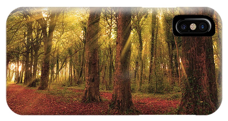 Forest IPhone X Case featuring the photograph Ballyannan Wood by Michael Walsh
