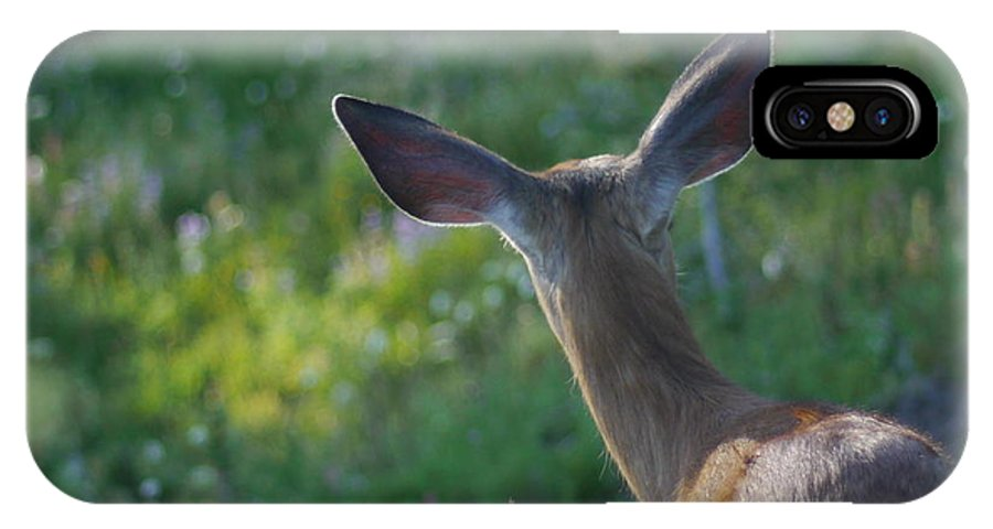 Mountain IPhone X Case featuring the photograph Bambi Ears by Rylee Stearnes