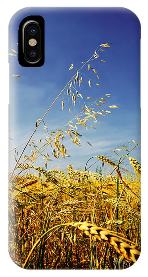 Barley IPhone X Case featuring the photograph Barley And Oat Vertical Hdr by Sylvie Bouchard