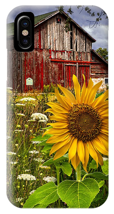 Barn IPhone X Case featuring the photograph Barn Meadow Flowers by Debra and Dave Vanderlaan