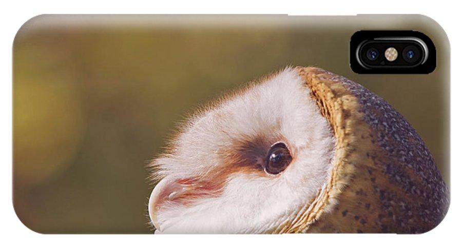 Barn Owl IPhone X Case featuring the photograph Barn Owl Photo Millie by Stephanie McDowell