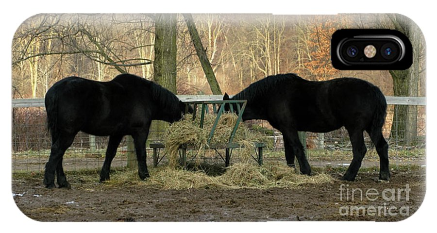 Horse IPhone X Case featuring the photograph Barnyard Beauties by Ann Horn