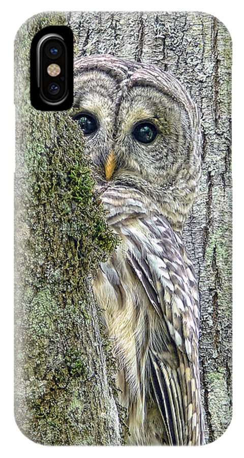 Owl IPhone X Case featuring the photograph Barred Owl Peek A Boo by Jennie Marie Schell