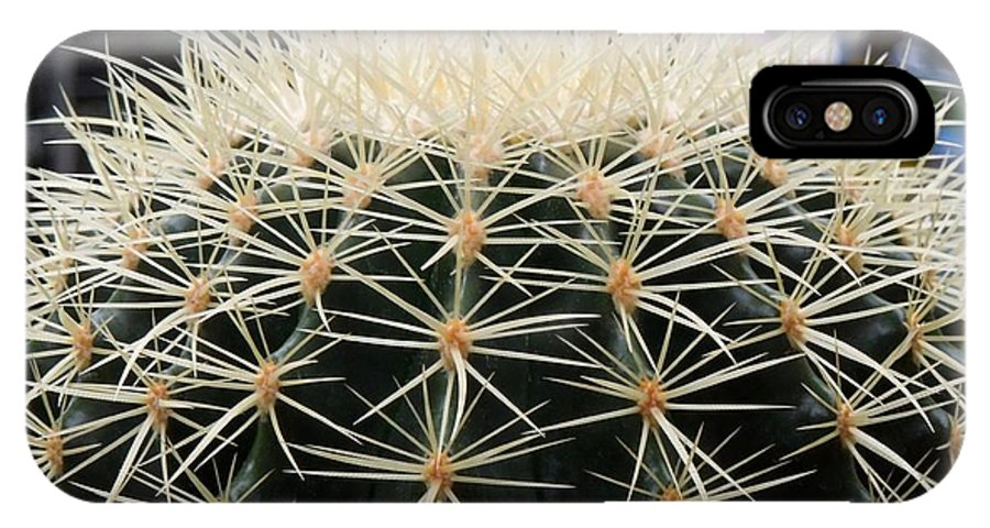 Barrel IPhone X Case featuring the photograph Barrel Cactus by Renee Trenholm