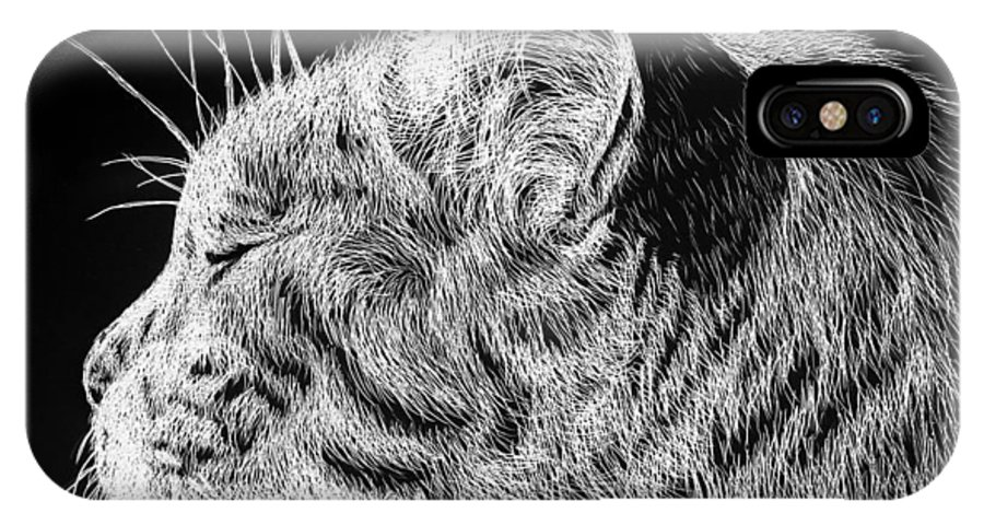 Cat IPhone X Case featuring the drawing Basking II by Monique Morin Matson