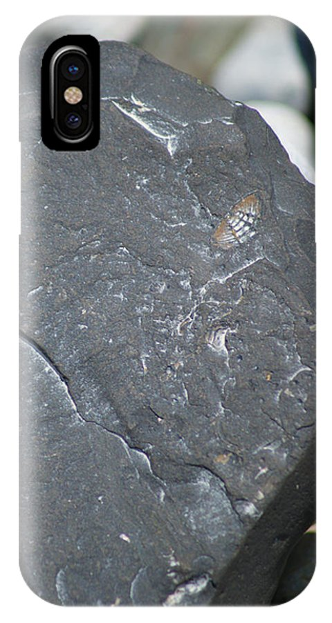 Lahay Creative IPhone X Case featuring the photograph Beach Fossil by Andrew Lahay