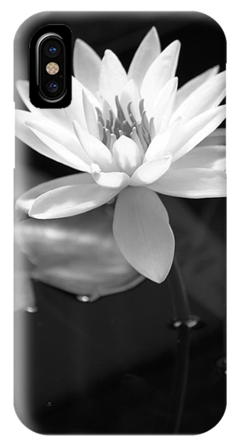 Nymphaeaceae IPhone X Case featuring the photograph Beautiful Lilly by Tahnee-Wesley Grant