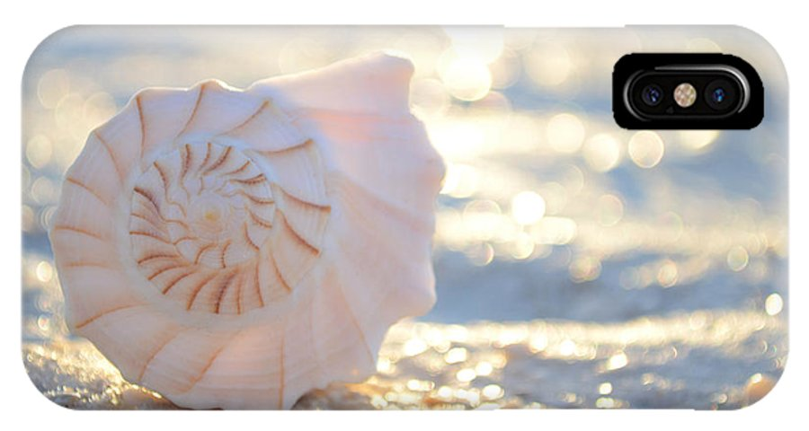 Seashell IPhone X Case featuring the photograph Beautiful Soul by Melanie Moraga