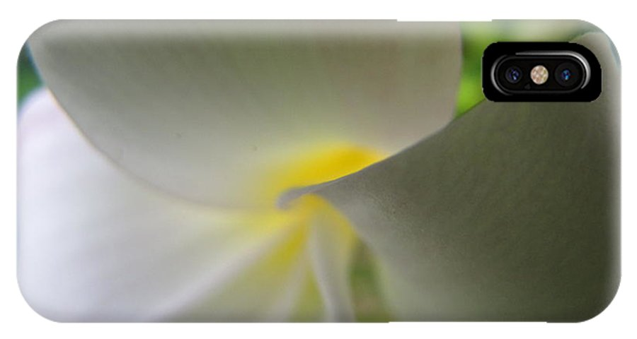 Plumeria IPhone X Case featuring the photograph Beauty by Beth Vincent
