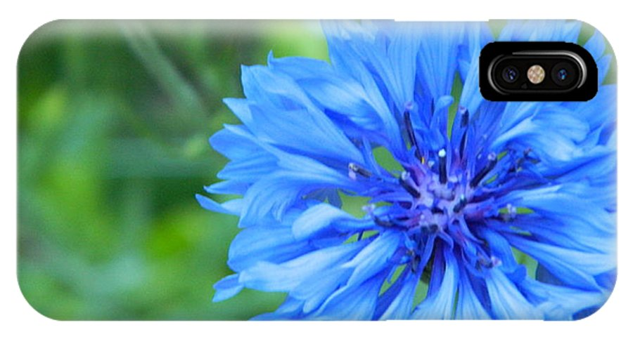 Maine IPhone X / XS Case featuring the photograph Beauty Of Spring by Jennifer Boisvert