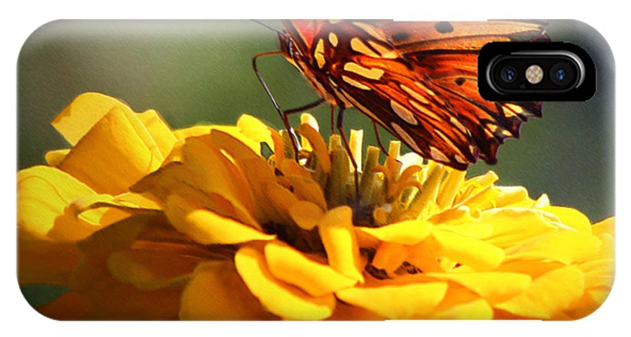 Butterfly IPhone X Case featuring the photograph Beauty Rest by Rhonda Burger