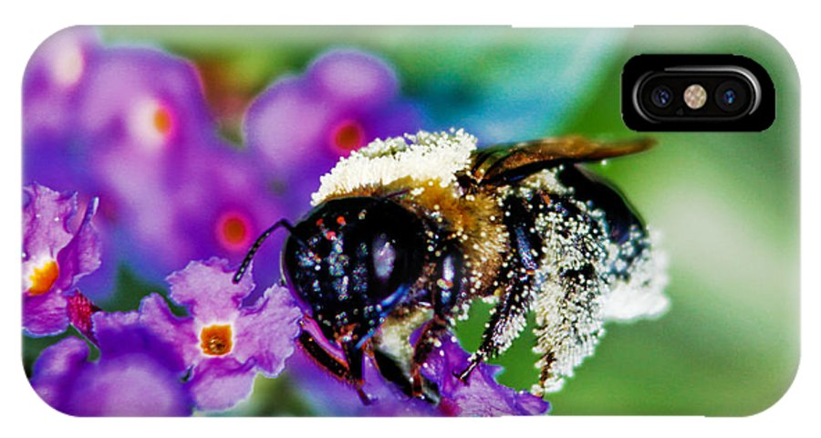 Bee IPhone X Case featuring the photograph Super Bee Covered With Pollen by Carol F Austin