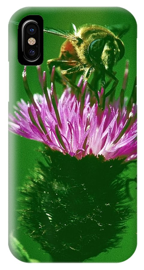 Nature IPhone X Case featuring the photograph Bee In A Green Ambiance by Patrick Kessler