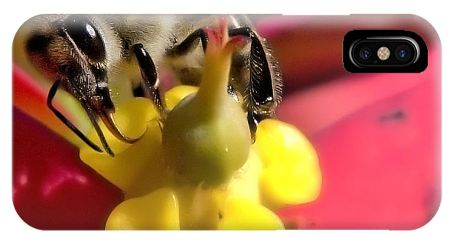 Bee IPhone X Case featuring the photograph Bee Macro by Bret Hunter