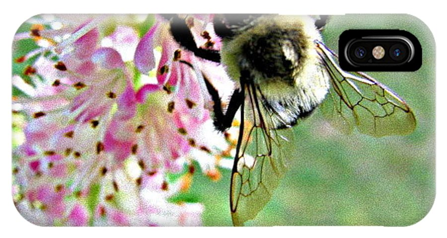 Hornet IPhone X Case featuring the photograph Bee by Selma Glunn