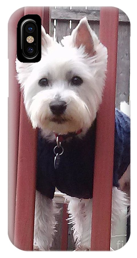 West Highland White Terrier IPhone X / XS Case featuring the mixed media Bella by Dianne Wendell
