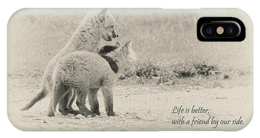 Fox IPhone X Case featuring the photograph Best Friends by Everet Regal