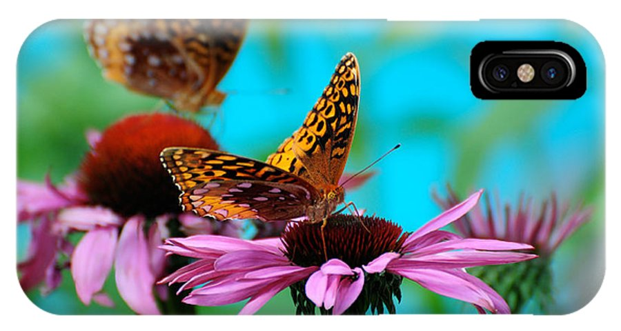 Butterfly IPhone X Case featuring the photograph Bff Best Friend Flutterbyes by Lois Bryan