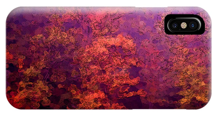 Kentucky IPhone X Case featuring the digital art Big Hill Autumn by George Ferrell