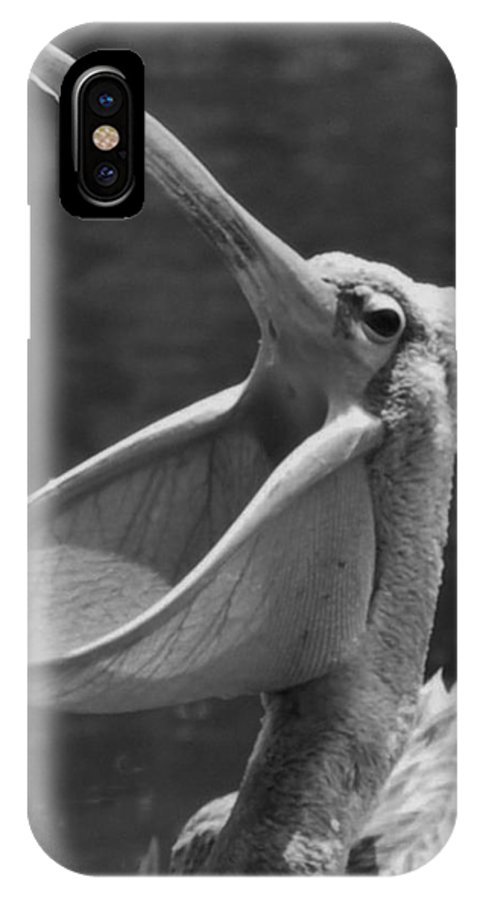 IPhone X / XS Case featuring the photograph Big Mounth Pelican by Thomas Preston