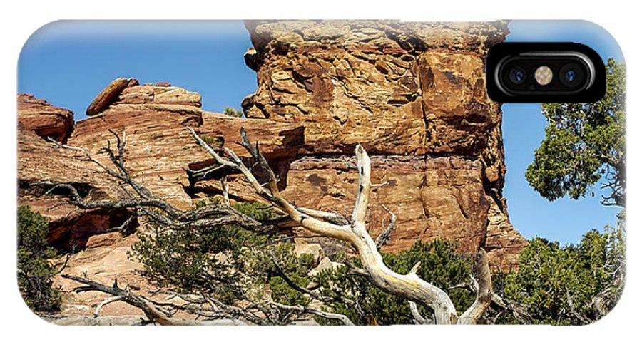 Big Spring Canyon Overlook Needles District Canyonlands National Park Utah Parks Rock Formation Formations Tree Trees Landscape Landscapes Desertscape Desertscapes IPhone X Case featuring the photograph Big Spring Canyon Overlook by Bob Phillips