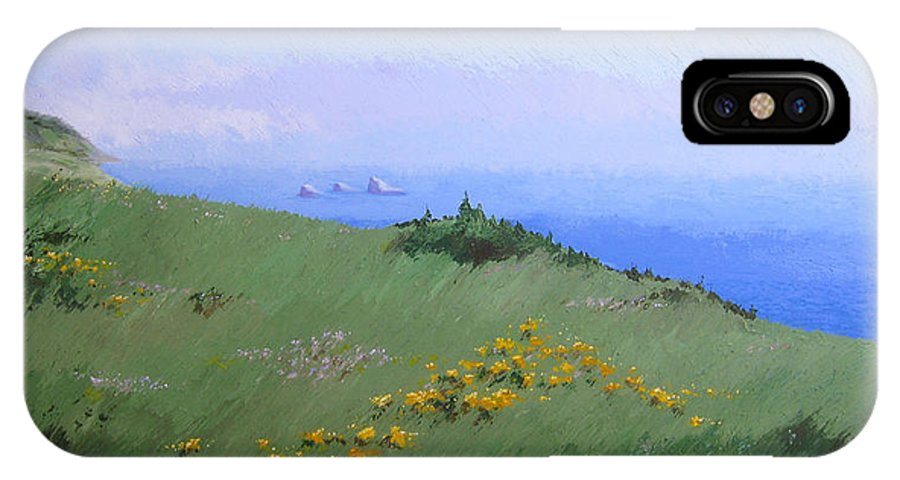 Landscape IPhone X / XS Case featuring the painting Big Sur by Hunter Jay