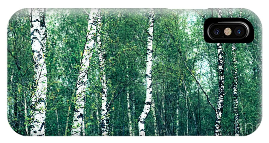 Abstract IPhone X Case featuring the photograph Birch Forest - Green by Hannes Cmarits