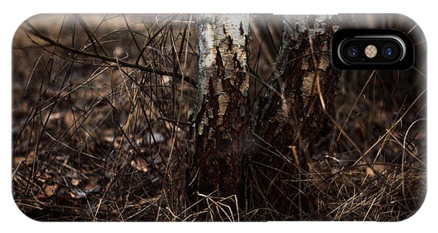 Birch IPhone X Case featuring the photograph Birch Trees by Alyaksandr Stzhalkouski