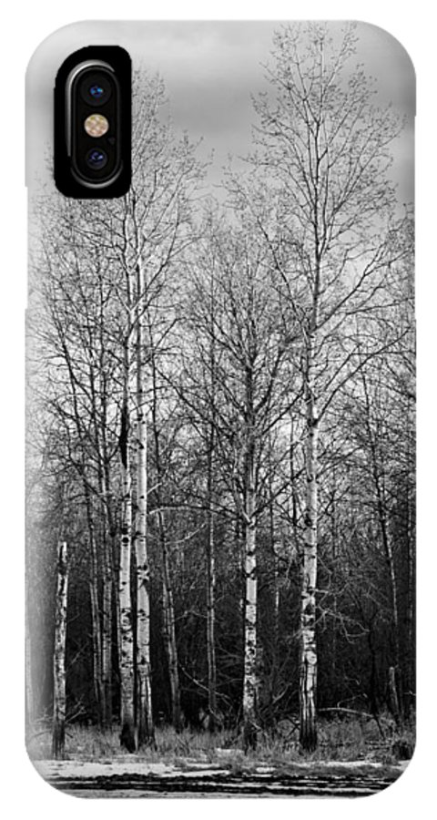 Landscape IPhone X Case featuring the photograph Birch Trees by Lindsey Weimer