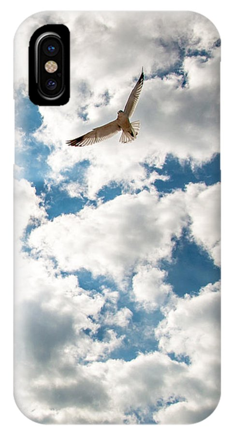 Animal IPhone X Case featuring the photograph Bird And The Clouds by Amel Dizdarevic