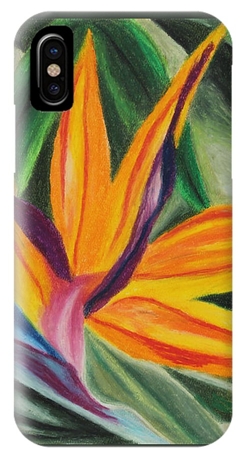 Annette M Stevenson Bird Of Paradise IPhone X Case featuring the painting Bird Of Paradise by Annette M Stevenson
