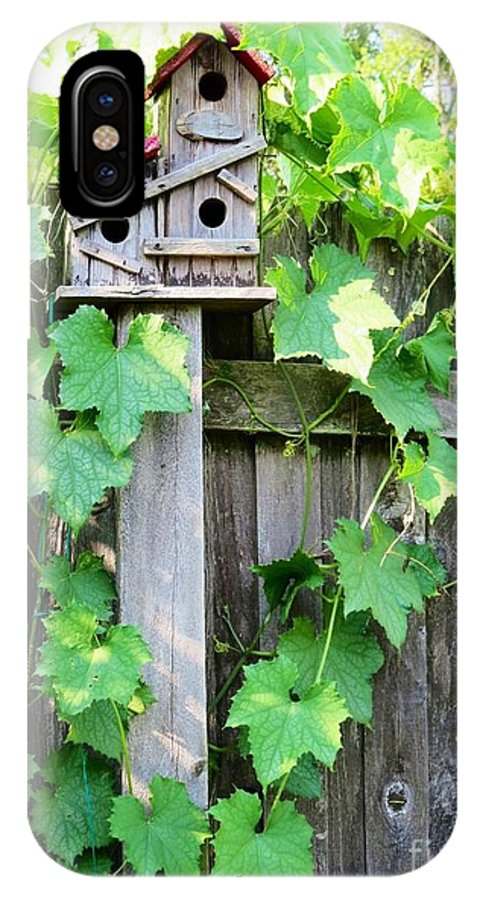 Nature Scene Backyard Scene Birdhouse Photos Climbing Vine Wooden Fence IPhone X Case featuring the photograph Birdhouse Sitting On A Fence by Kimberlee Baxter
