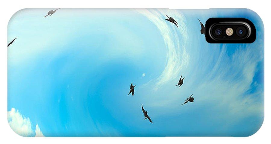 Birds IPhone X Case featuring the photograph Birds by Bruce Bain