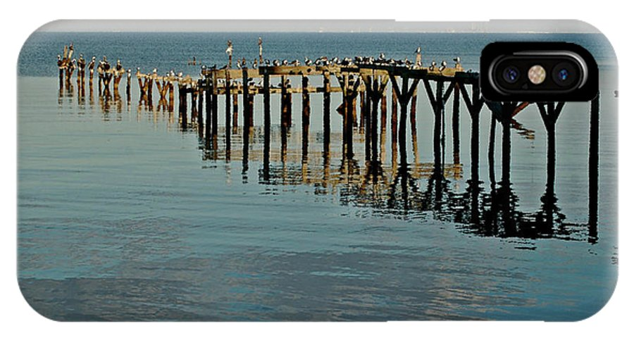Alabama Photographer IPhone X Case featuring the painting Birds On Old Dock On The Bay by Michael Thomas