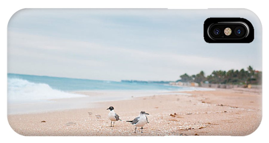 Beaches IPhone X Case featuring the photograph Birds On The Beach 0006 by Terrence Downing