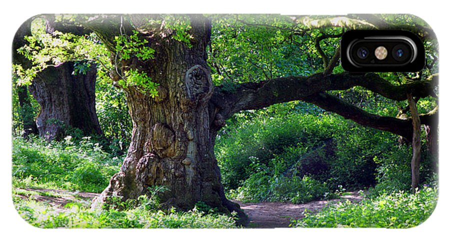 Shakespeare IPhone X Case featuring the photograph Birnam Wood Scotland by David Cairns