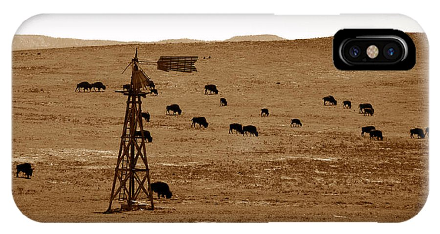 Bison IPhone X Case featuring the photograph Bison And Windmill by David Lee Thompson