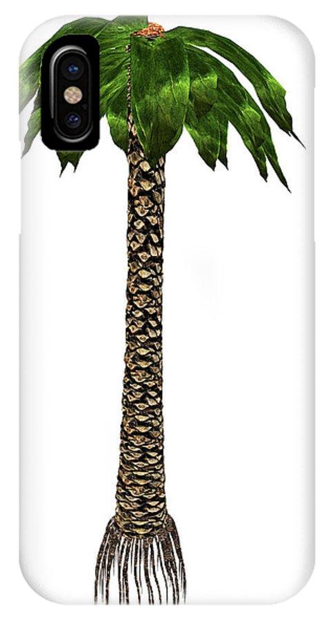 Tree IPhone X Case featuring the photograph Bjuvia Simplex Prehistoric Tree by Elena Duvernay