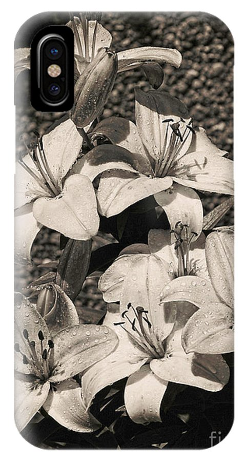 Flower IPhone X Case featuring the photograph Black And White Orchids by Dawn Harris